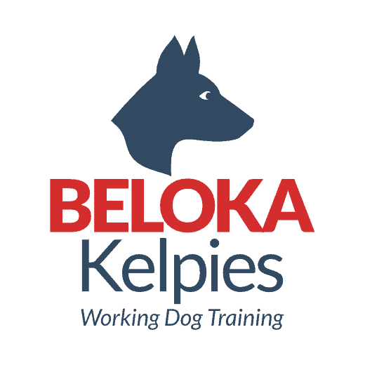 Beloka Kelpies logo outlined 2